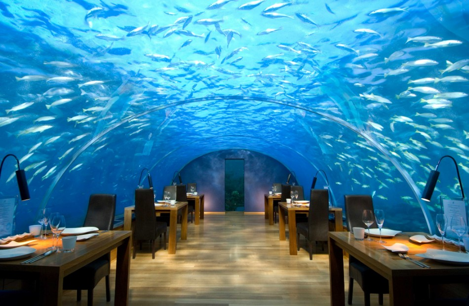 unique restaurant 10 Unique Restaurants You Should Go At Least Once hiltonrangalimaldives2